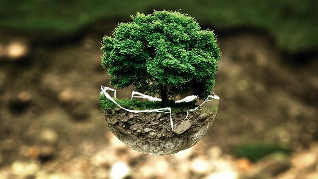 Der Weltumwelttag / Tag der Umwelt 2019